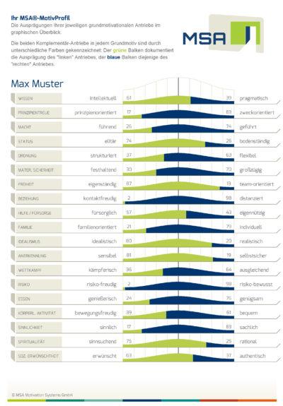 MotivStrukturAnalyse-MSA-Persoenlichkeitstest